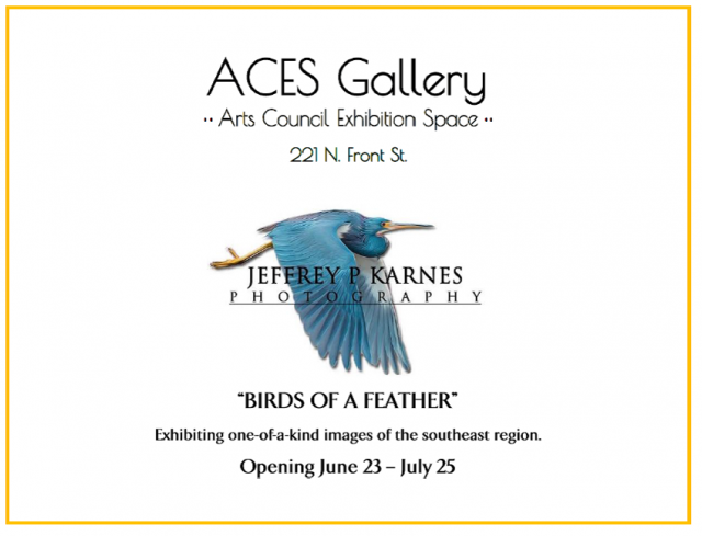 Opening Friday, June 23 @ ACES Gallery